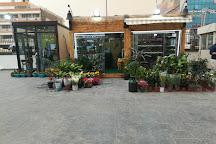 Al Mansur Mall, Baghdad, Iraq
