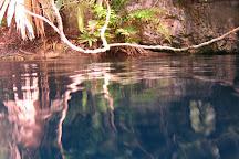 Cenote Angelita, Tulum, Mexico