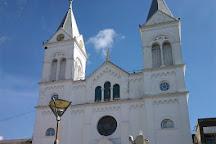 Catedral San Antonio de Padua de la Concordia, Concordia, Argentina