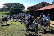 Tropical Comfort Tours, Playas del Coco, Costa Rica