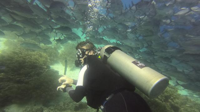 Haka Dive Center