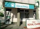 Gabinet Weterynaryjny BOLIŁAPKA, Дубовая улица на фото Кельце