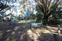 Blenheim Beach, Vincentia, Australia