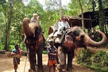 Keralayathra Tours and Travels, Ernakulam, India