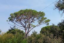 Europaradise, Montemor-o-Velho, Portugal