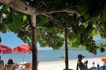 Armacao Da Piedade Beach, Governador Celso Ramos, Brazil