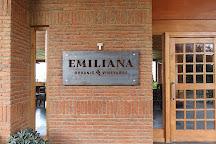 Emiliana Organic Vineyards, Casablanca, Chile