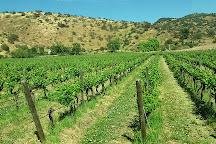 Vina Haras de Pirque, Pirque, Chile