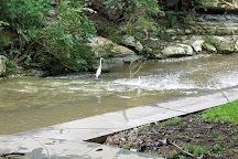 Turtle Creek Park, Dallas, United States