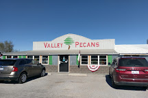 Valley Pecans, Chillicothe, United States