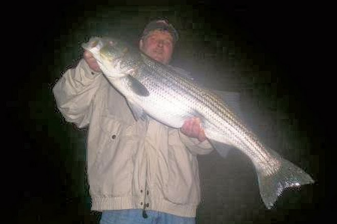 Visit Seacoast New Hampshire Sportfishing on your trip to Rye