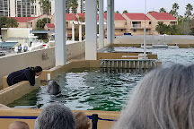 Clearwater Marine Aquarium, Clearwater, United States