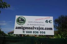 Amigos Salvajes, Llanes, Spain