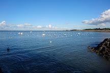 Pointe Saint Gildas, Prefailles, France