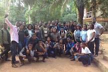Okomu National Park, Benin City, Nigeria