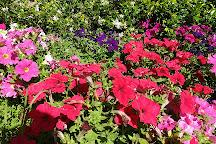 Picton Botanical Gardens, Picton, Australia