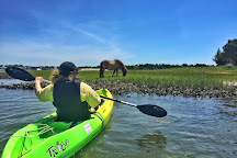 Beaufort Paddle, Beaufort, United States