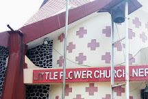 Little Flower Church, Navi Mumbai, India