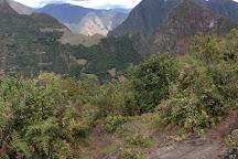 Phutuq K'usi, Aguas Calientes, Peru