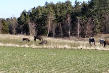 Nationalpark Mols Bjerge, Roende, Denmark