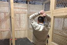 Craft Axe Throwing- Omaha, Omaha, United States