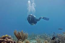 DM Diving, Playa del Carmen, Mexico