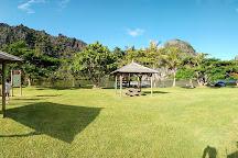 Aire de Repos de Lindéralique, Hienghene, New Caledonia