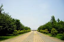 Tatsuminomori Kaihin Park, Koto, Japan