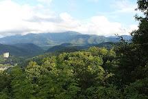 Smoky Mountain Riding Stables, Gatlinburg, United States