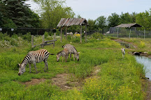 Magnetic Hill Zoo, Moncton, Canada