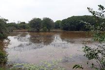 Beddegana Wetland Park, Sri Jayawardenepura, Sri Lanka