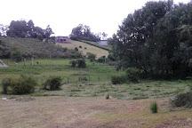 Reserva Experimental Horco Molle, San Miguel de Tucuman, Argentina