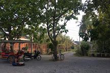 Mrs. Bun Roeung's Ancient House, Battambang, Cambodia