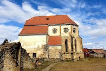 Carta Monastery, Carta, Romania