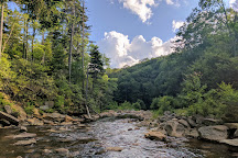 Monongahela National Forest, Elkins, United States