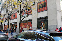 FAO Schwarz, New York City, United States