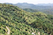 Shimla Water Catchment Wildlife Sanctuary, Shimla, India