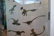 Dinosaur Geopark, Hateg, Romania