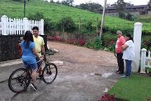 ASY Tours Sri Lanka, Nuwara Eliya, Sri Lanka