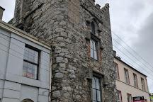 Hatch's Castle, Ardee, Ireland
