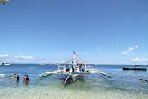 دراس غوص القرش، جزيرة مالاباسكوا، الفلبين