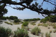 Ostriconi Beach, Palasca, France