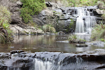 Great Otway National Park, Hordern Vale, Australia