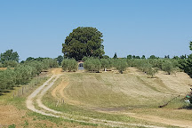 Azienda Agricola Montalpruno, Poggibonsi, Italy