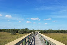 Ponce Preserve, Ponce Inlet, United States