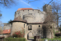 Guttenberg Castle (Burg Guttenberg), Hassmersheim, Germany