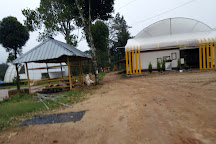 Regional Agricultural Research Station, Sultan Bathery, India