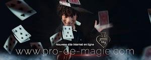 Yannis Why LE MAGICIEN