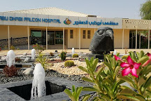 Abu Dhabi Falcon Hospital, Abu Dhabi, United Arab Emirates
