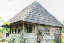 Constantin Brancusi House Museum, Hobita, Romania